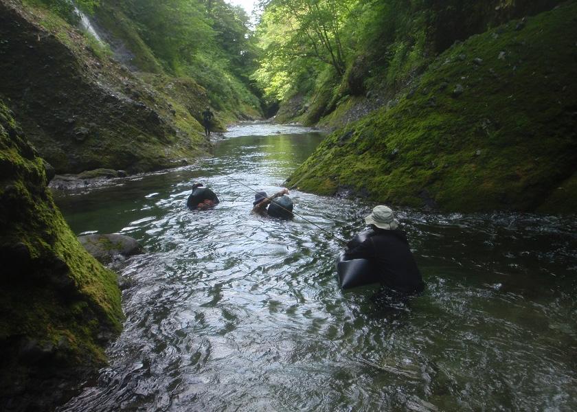 北海道観光情報 北海道内各地の観光情報サイト ツアーネット
