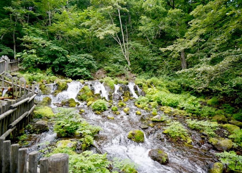 日本一の水