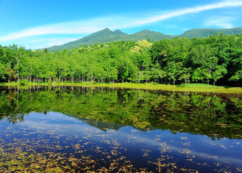 知床五湖|知床羅臼 観光