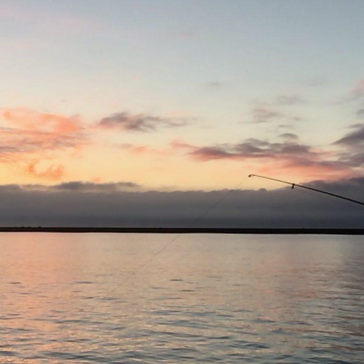 白老漁港|北海道の釣り場