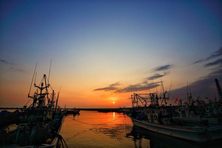 苫小牧漁港|北海道の釣り場