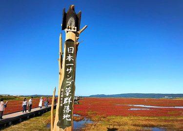 網走にある能取湖はどんな場所!?絶景のサンゴ草群を楽しめるオススメスポット