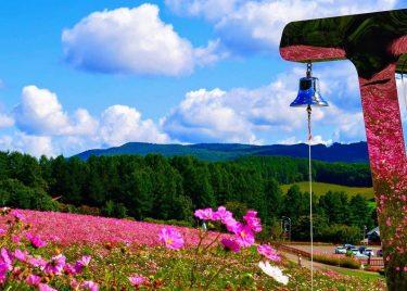 網走管内の人気スポット!遠軽町「太陽の丘えんがる公園」虹の広場へ行こう